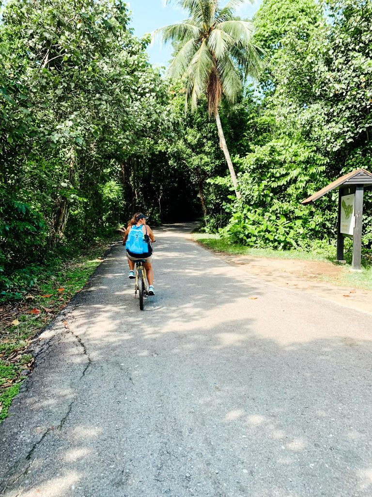 biking through Pulau Ubin