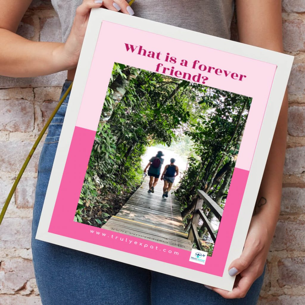 What is a forever friend