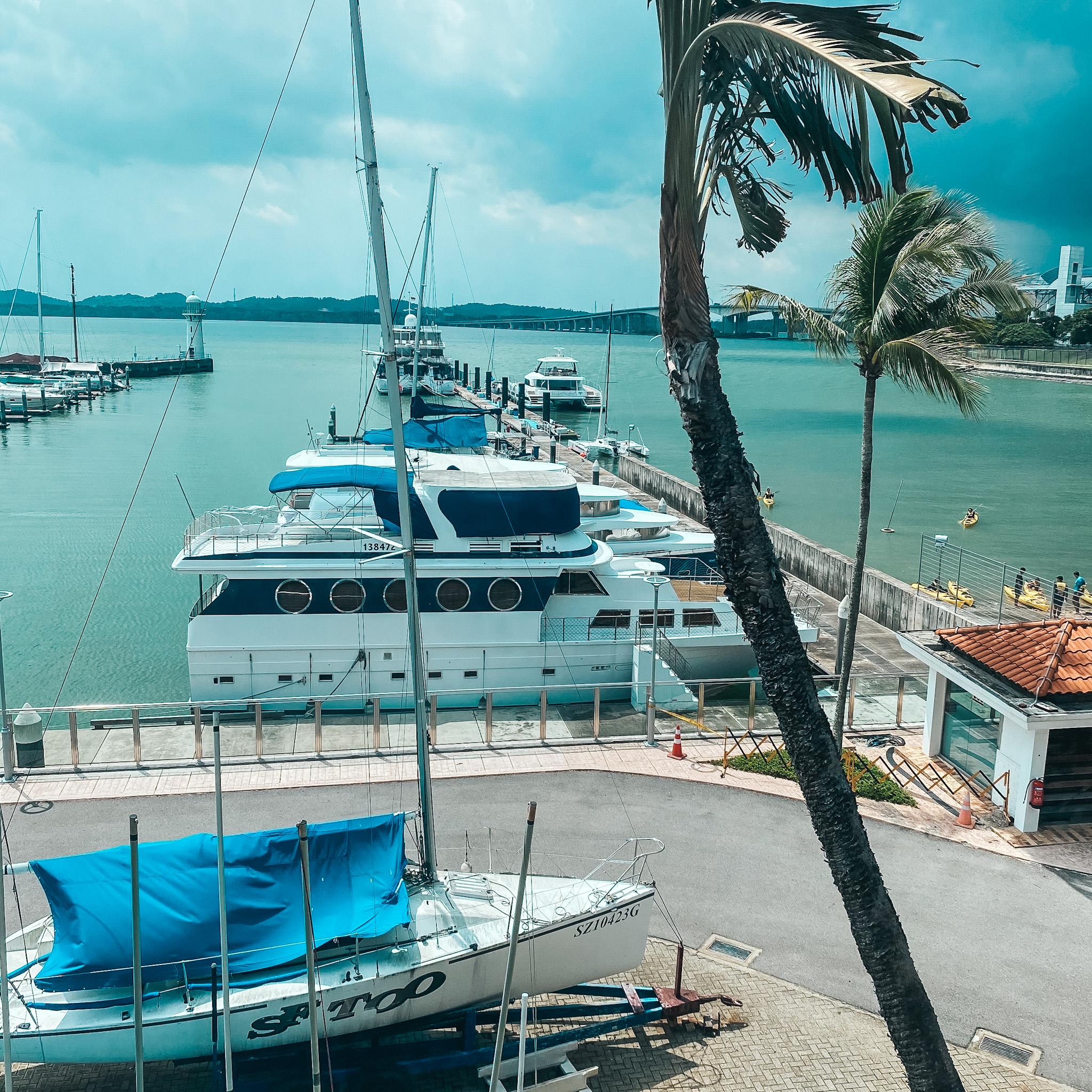 View from Raffles Marina