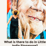 What is there to do in LIttle India